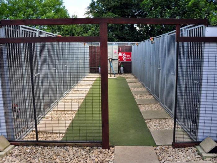 Main kennel block